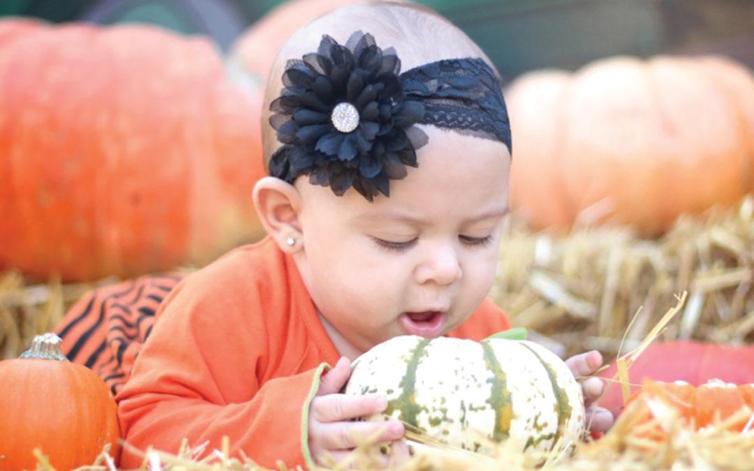 Gilchrist Farm Pumpkin Patch and Harvest Festival